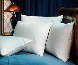 2 Pacific Coast Double Down Surround Standard Pillows At Rit