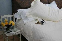 5 Star Hotel King Microfibre Pillow - Meriton Apartments