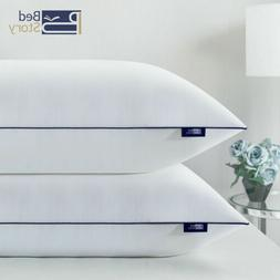 BedStory Bed Pillows for Sleeping Standard Size Set of 2  Ho