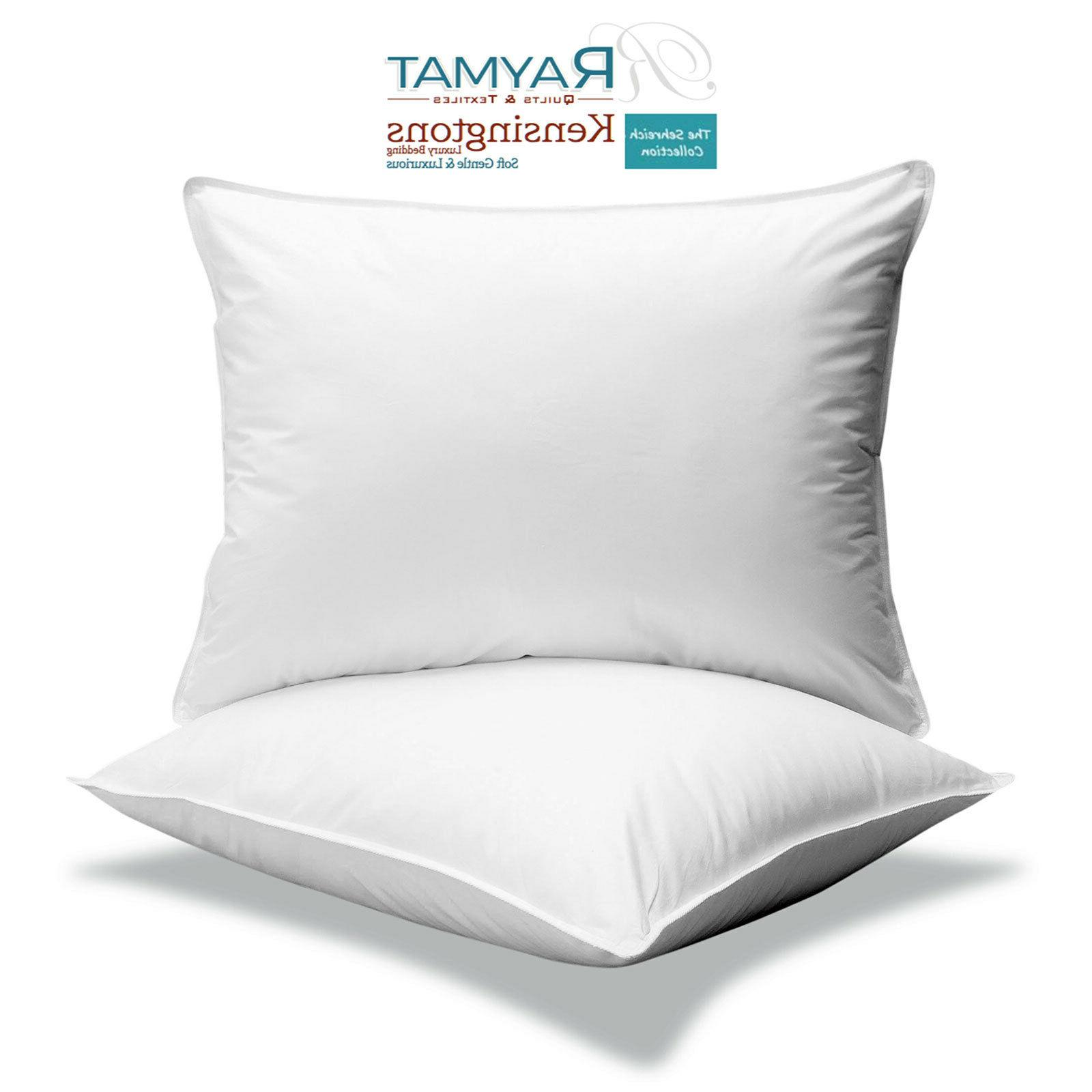 2 x microfibre continental square pillow 65cm