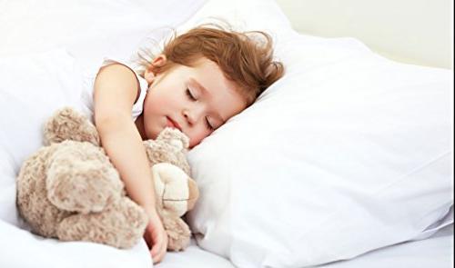 Digital Two Premium Alternative Sleeping Plus 2 Free